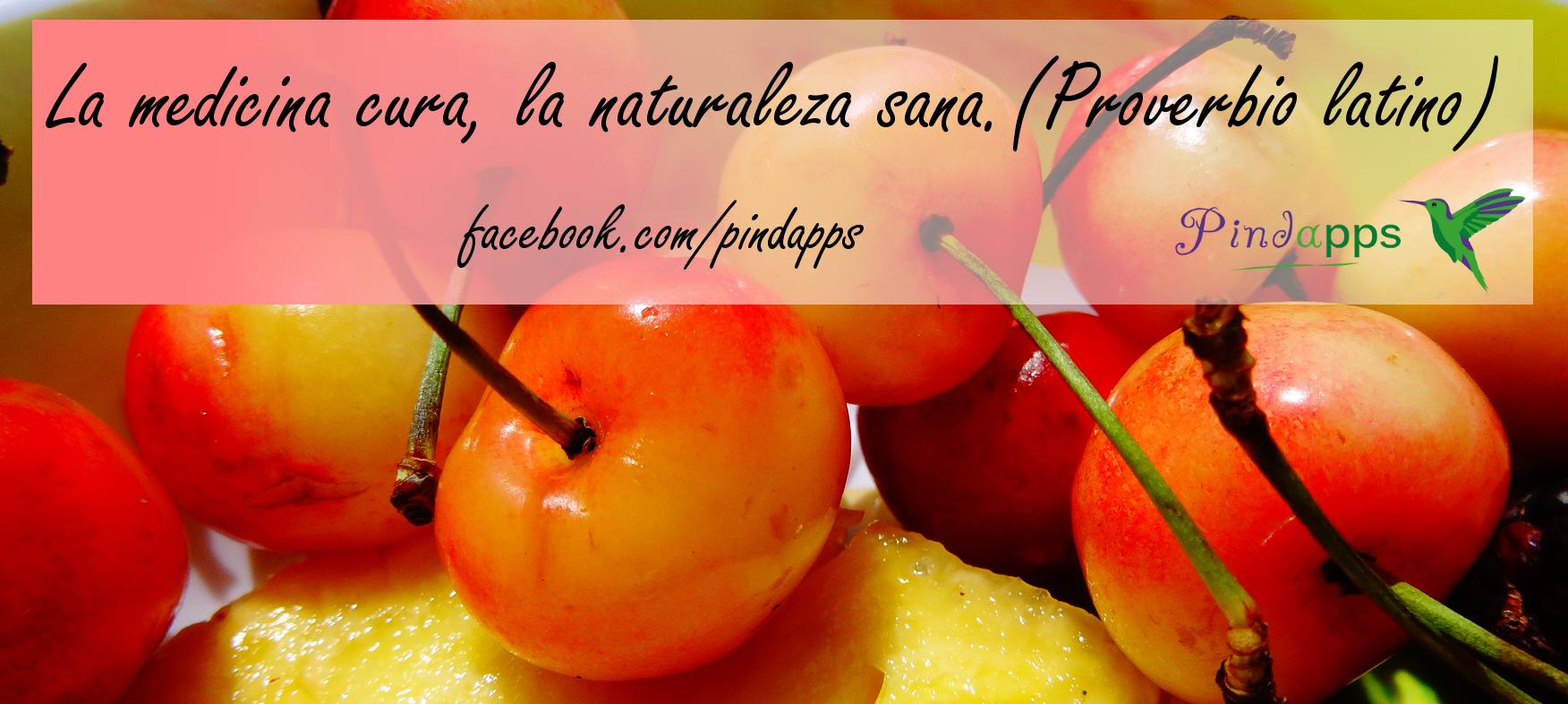 Frases Doação De Alimentos: Frases De Saludable (44 Frases