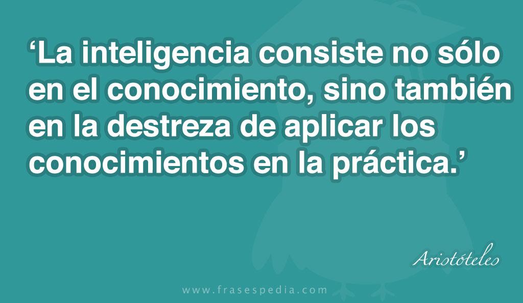 Frases de Inteligencia (255 frases)