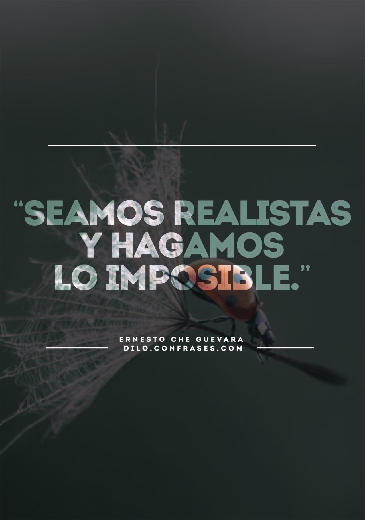 Frases De Realista 38 Frases Frases Realistas De La Vida Cortas