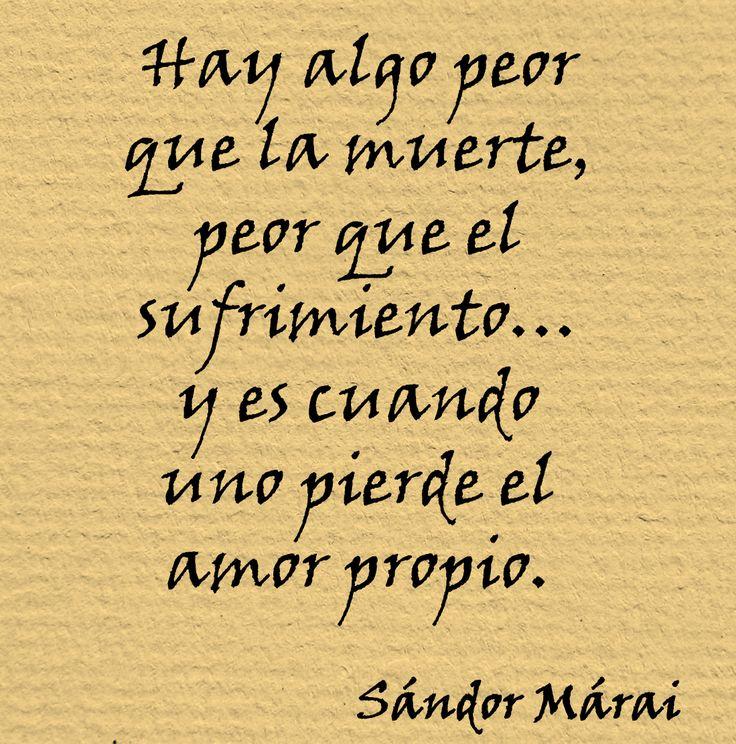 Frases De Amor Propio 65 Frases